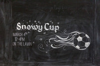 Snowy Cup 2017-1